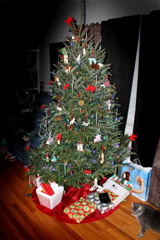Big Tree-3 6220
