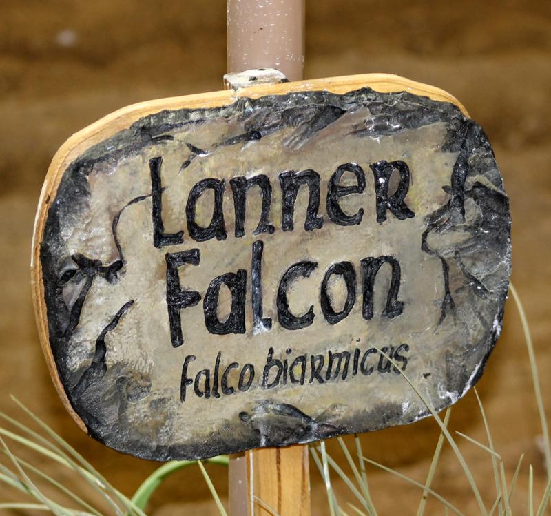 Lanner Sign 6035