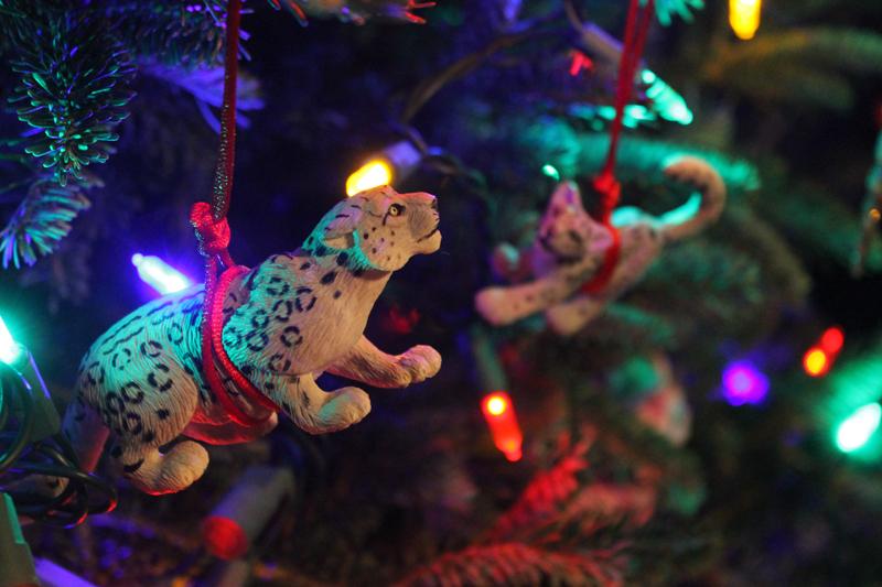 Ornaments-2 6233