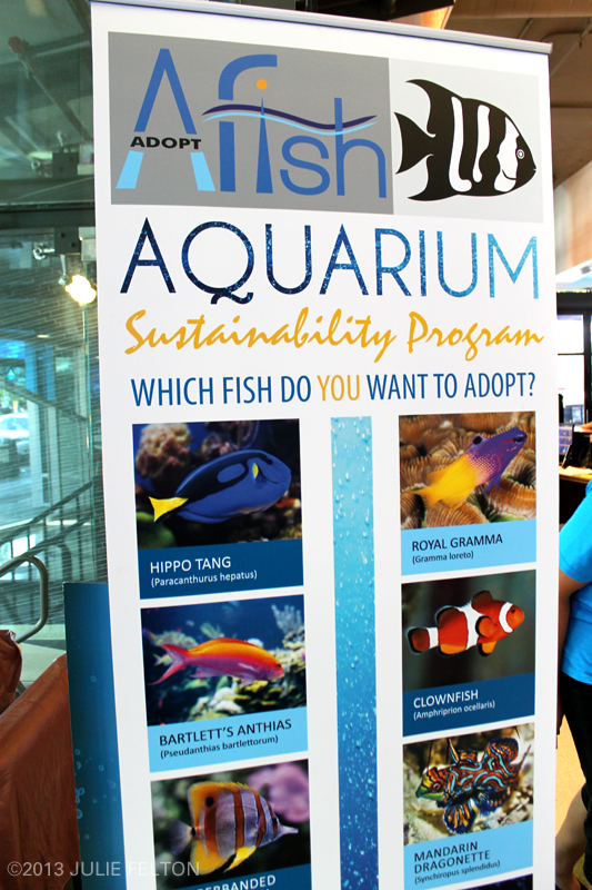 AquariumSignTop2921