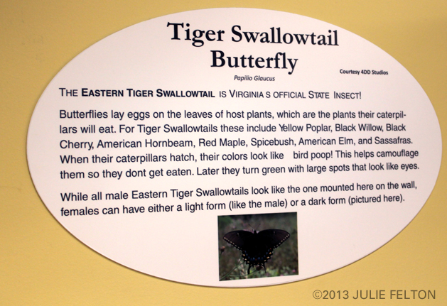 Butterfly Plaque 3089