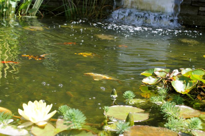 Pond 3148