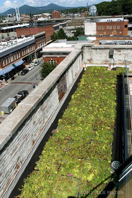 Rooftop Garden 3167