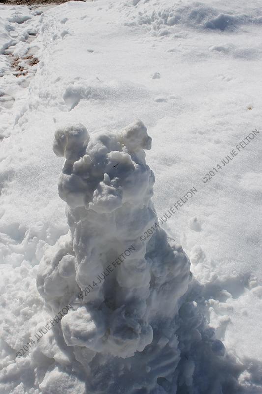 Snow Animal 9142