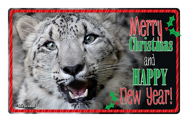 Christmas Snow Leopard 15 (web)